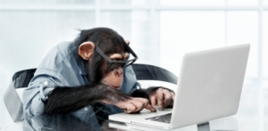 Actual picture of Jerry writing his next post